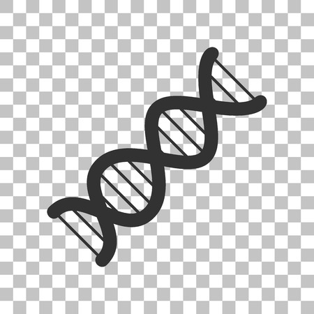 heredity: The DNA sign. Dark gray icon on transparent background.