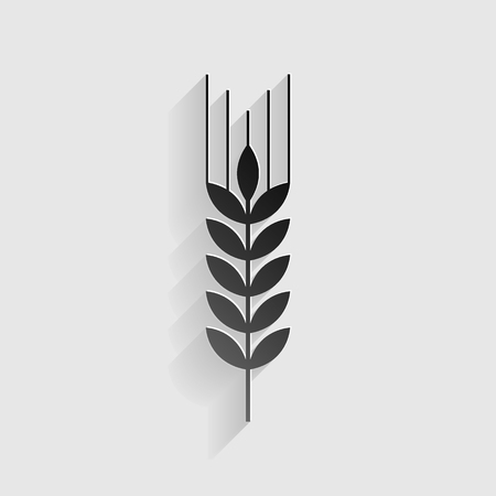 Wheat sign illustration. Black paper with shadow on gray background.