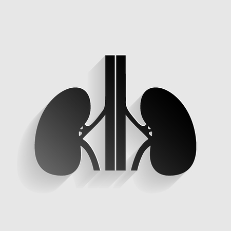 ureter: Human kidneys sign. Black paper with shadow on gray background. Illustration