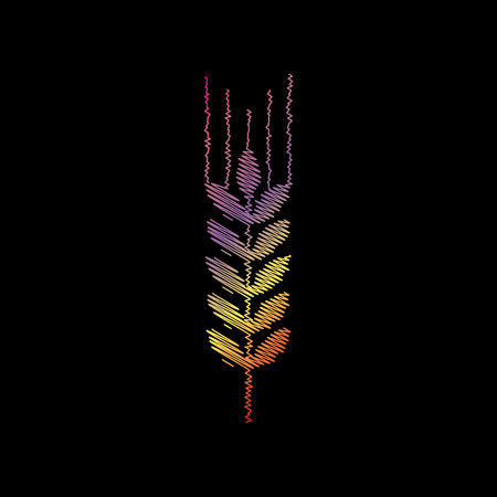Wheat sign illustration. Coloful chalk effect on black backgound. Illustration