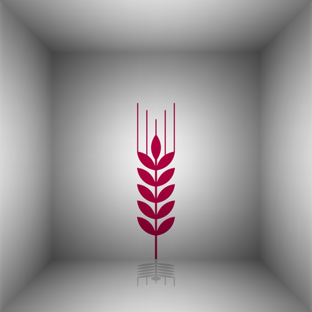 rye: Wheat sign illustration. Bordo icon with shadow in the room.