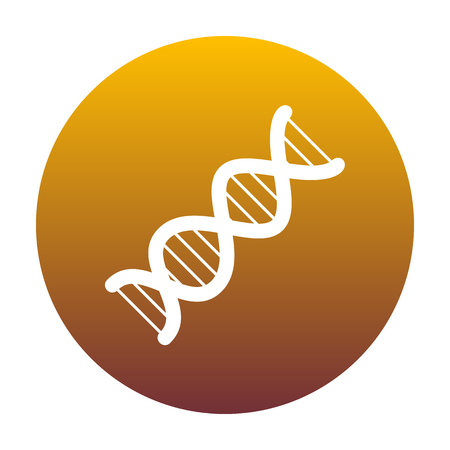The DNA sign. White icon in circle with golden gradient as background. Isolated.