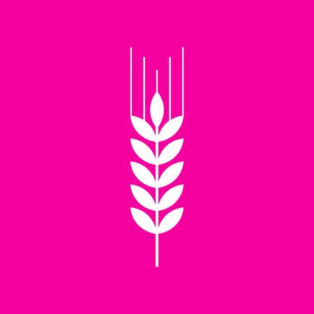 Wheat sign illustration. White icon at magenta background.