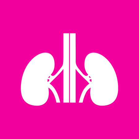 Human kidneys sign. White icon at magenta background.