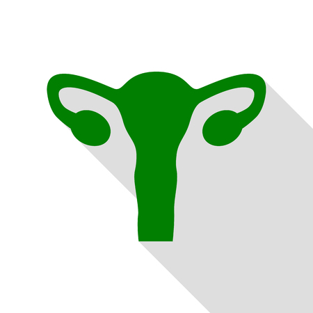 gynaecology: Human Body Anatomy Uterus sign. Green icon with flat style shadow path. Illustration