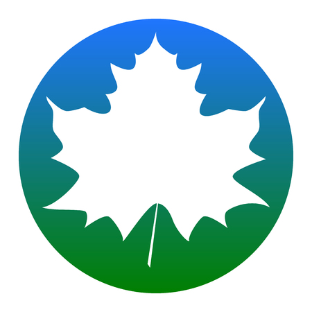 Maple leaf sign. Vector. White icon in bluish circle on white background. Isolated.