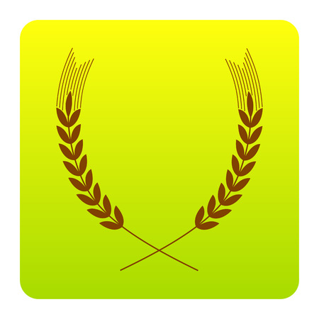 Wheat sign illustration. Spike. Spica. Vector. Brown icon at green-yellow gradient square with rounded corners on white background. Isolated.