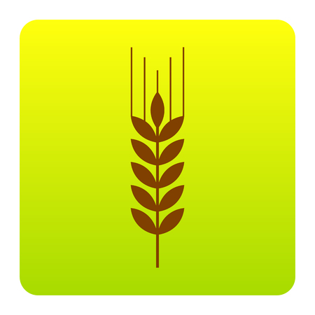 spica: Wheat sign illustration. Spike. Spica. Vector. Brown icon at green-yellow gradient square with rounded corners on white background. Isolated.