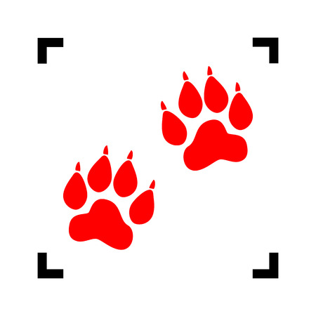 footmark: Animal Tracks sign. Vector. Red icon inside black focus corners on white background. Isolated.