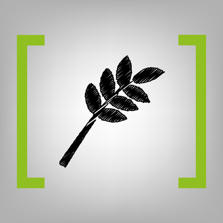 Tree branch sign. Vector. Black scribble icon in citron brackets on grayish background.