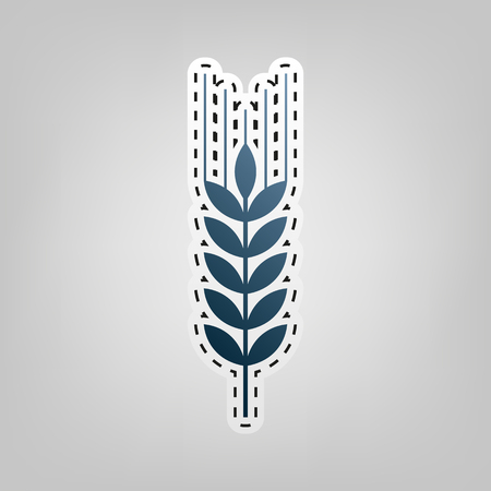 Wheat sign illustration. Spike. Spica. Vector. Blue icon with outline for cutting out at gray background. Illustration