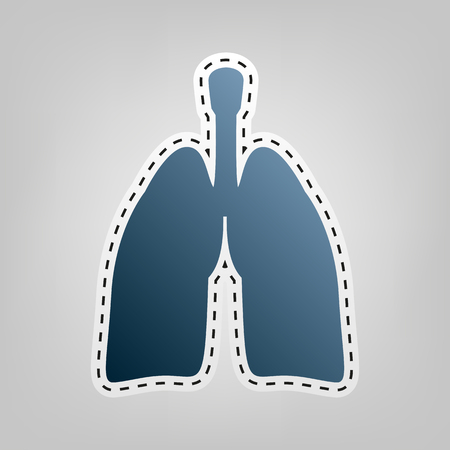 Human anatomy. Lungs sign. Vector. Blue icon with outline for cutting out at gray background. Illustration