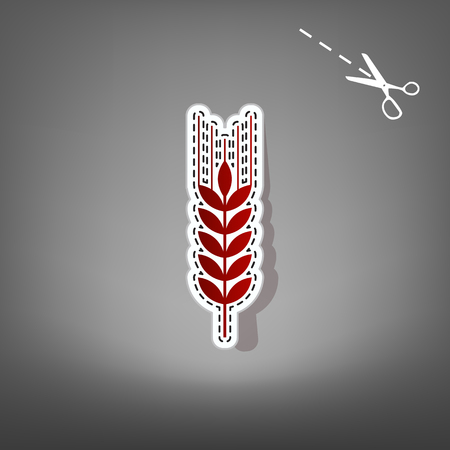 Wheat sign illustration. Spike. Spica. Vector. Red icon with for applique from paper with shadow on gray background with scissors.