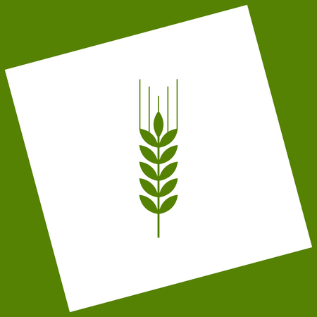 Wheat sign illustration. Spike. Spica. Vector. White icon obtained as a result of subtraction rotated square and path. Avocado background.