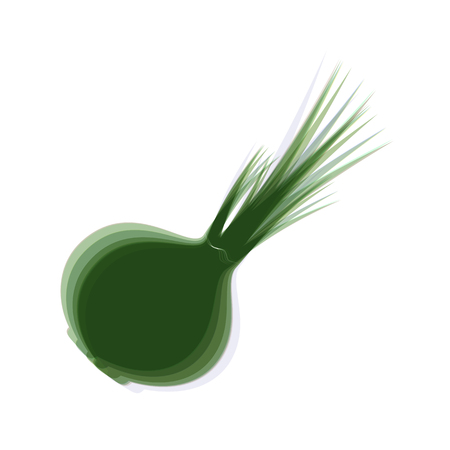 Onion sign. Salad ingredient. Healthy vegetable. Vector. Colorful icon shaked with vertical axis at white background. Isolated. Illustration