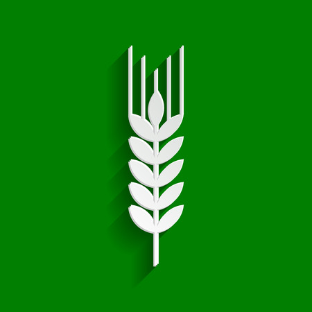 Wheat sign illustration. Spike. Spica. Vector. Paper whitish icon with soft shadow on green background. Illustration