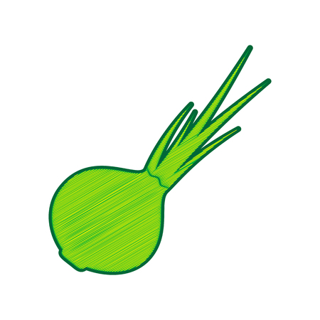 Onion sign. Salad ingredient. Healthy vegetable. Vector. Lemon scribble icon on white background. Illustration