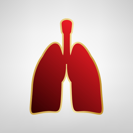 Human anatomy. Lungs sign. Vector. Red icon on gold sticker at light gray background. Illustration