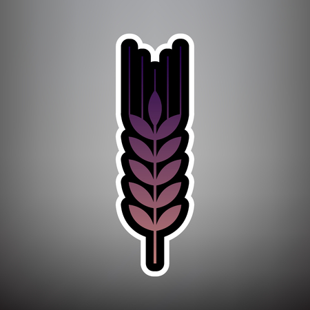 Wheat sign illustration. Spike. Spica. Vector. Violet gradient icon with black and white linear edges at gray background.