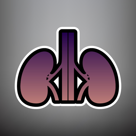 Human anatomy. Kidneys sign. Vector. Violet gradient icon with black and white linear edges at gray background. Vectores