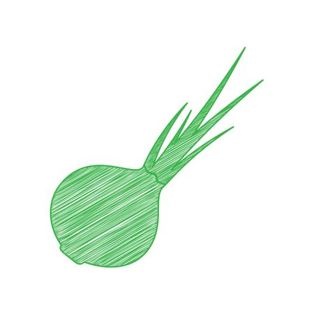 Onion sign. Salad ingredient. Healthy vegetable. Green scribble Icon with solid contour on white background.