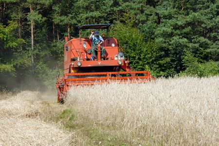red combine harvester harvesting a grain field Stock Photo - 2993566