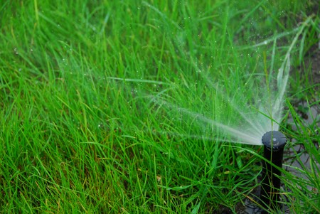 lawn sprinkler: Pop up lawn irrigation system to water grass growing in sandy loam Stock Photo