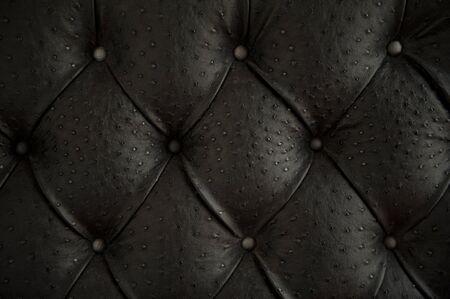 avestruz: Lujo botones de cuero de avestruz patr�n Foto de archivo