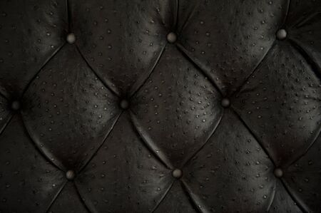 Luxury buttoned ostrich leather pattern  photo