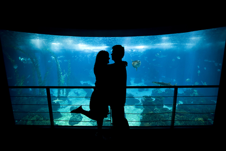 Young lovers cuddle in front of Lisbons aquarium photo
