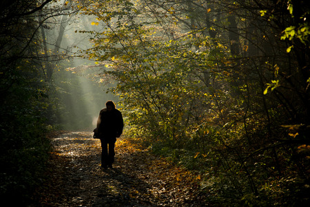 Man silhouette walking on the autumn forest road in the light of the morning sunlight. photo