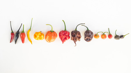 een kleurrijke mix van de heetste chili pepers. Thaise chili, habanero, serrano, jalapeno, Naga Jolokia, Trinidad Scorpion, Carolina Reaper, jamaicaanse geel, zwart chili