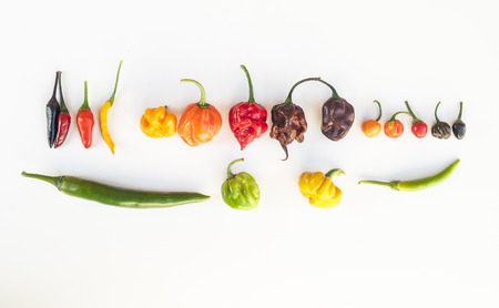 hottest: a colorful mix of the hottest chili peppers. Thai chili, habanero, serrano, jalapeno, bhut jolokia, trinidad scorpion, carolina reaper, jamaican yellow, black chili Stock Photo