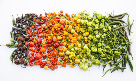 a colorful mix of the hottest chili peppers. Thai chili, habanero, serrano, jalapeno, bhut jolokia, trinidad scorpion, carolina reaper, jamaican yellow, black chili Stock Photo