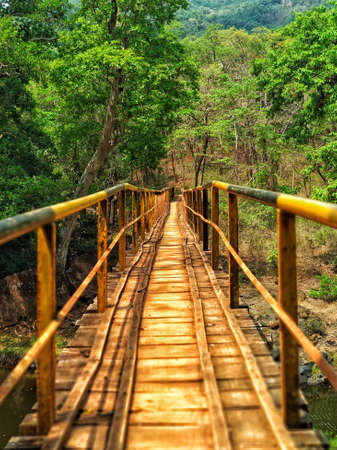 A Narrow wooden base bridge in a forest area with beautiful large trees in western ghats.This small bridge is very scary, It is between the forest.