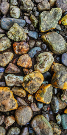 Colorful Pebbles stones near a river in western ghats. This photo can be used as your mobile wallpaper. 写真素材