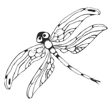 Dragonflie. Lovely hand drawn graphic grayscale illustration Illustration