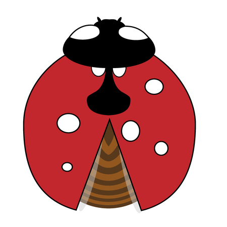 Lady-bird or ladybug isolated on light white background. Red insect. illustration Stock Photo
