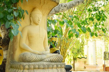 concentration: Buddha on concentration