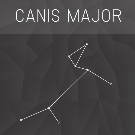 major: Canis Major Constellation