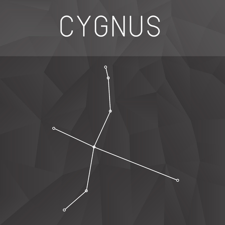 Cygnus Constellation