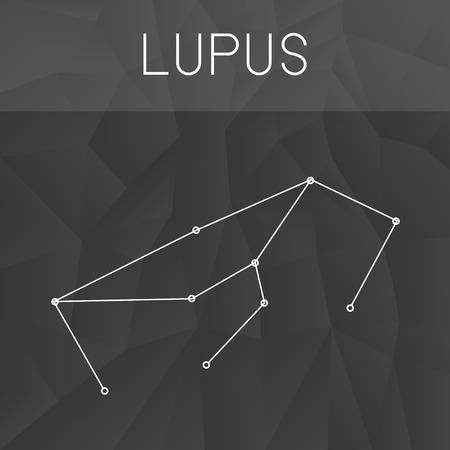constelacion: constelaci�n de lupus