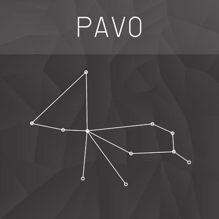 constelacion: constelaci�n del Pavo