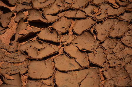 natural disaster: dry, soil, water, close up, selective, focus, picture, photo, background, hard, tough, rough, rugged, jagged, craged, land, surface, drought, arid, dead, hot, dust, nature, outdoor, brown, dark, natural disaster