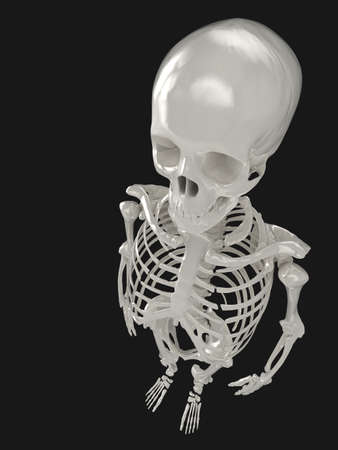Glossy skeleton illustration, viewed from above and isolated on a black background. See my portfolio for alternative views. Stock Illustration - 5578418
