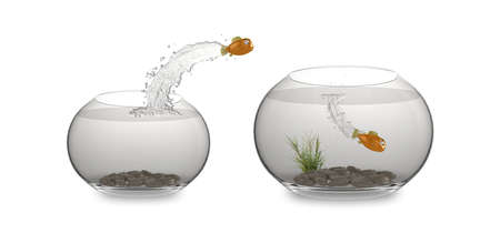 3d cartoon fish jumping from one bowl to another. High quality illustration - please see my portfolio for more in the series. illustration