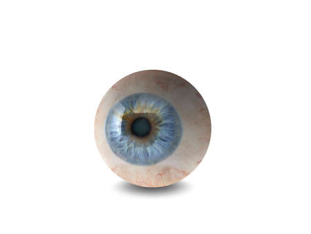 eyes wide: High quality 3d eyeball illustration Stock Photo