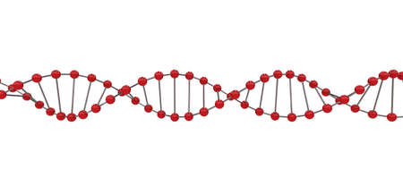 3d representation of dna, on a white background photo