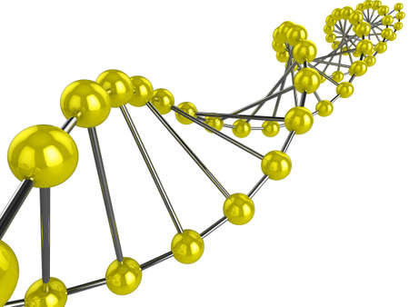 3d representation of DNA on a white background Stock Photo - 6797324