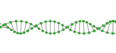 3d representation of dna, on a white background Stock Photo - 8327300